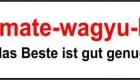 Werbeagentur Narrischguar Logo Design